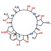 棘球白素 B
