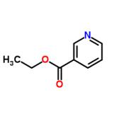 Ethyl nicotinoate