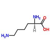 D-赖氨酸