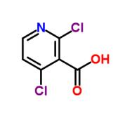2,4-二氯烟酸