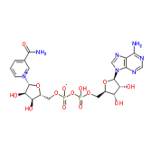 氧化型辅酶I