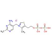 焦磷酸硫胺素